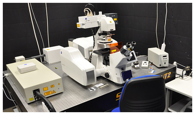 Confocal Microscopes (LSM 7 DUO)
